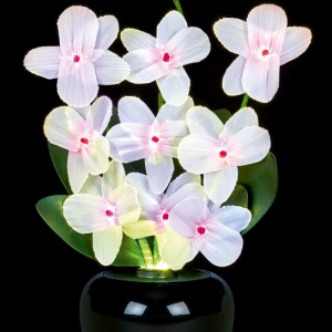 Fibre Optic Flowers Orchid Light Display