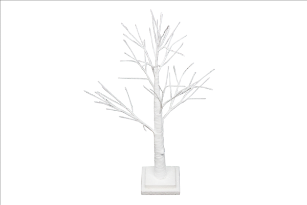 White Spiky Twig Tree
