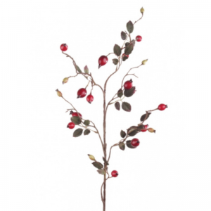 Rose Hip Spray