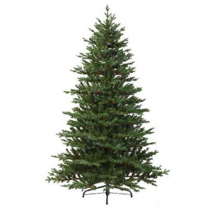Queensland Fir 210cm OUR PRICE £209.99