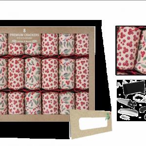 Premium Craft Berry Crackers 8