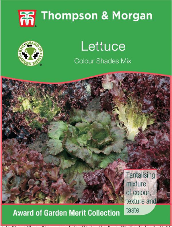 Lettuce Colour Shades