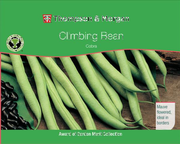 Climbing Bean Cobra