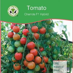 Tomato Cherrola F1