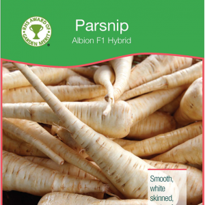 Parsnip Albion
