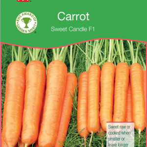 Carrot Sweet Candle F1