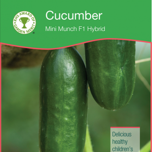 Cucumber Mini Munch
