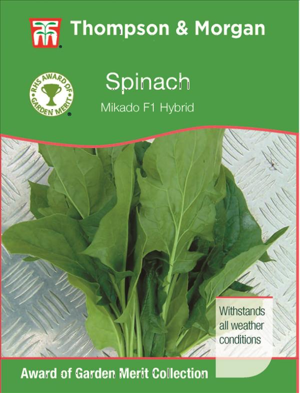 Spinach Mikado F1
