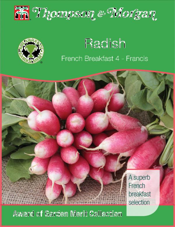 Radish French Breakfast 4