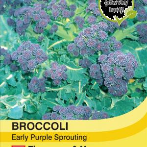 Broccoli Early Purple