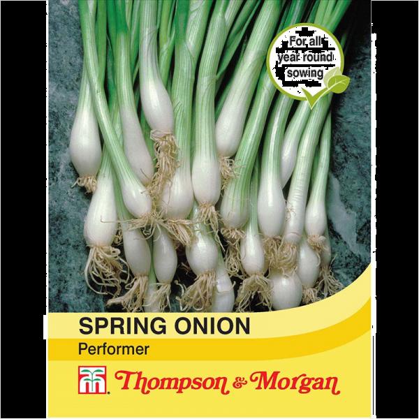 Spring Onion Performer