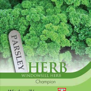 Herb Parsley Champion