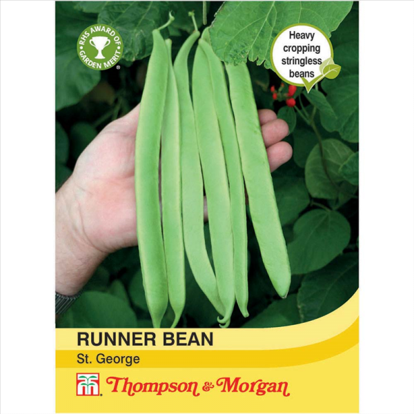Runner Bean St. George