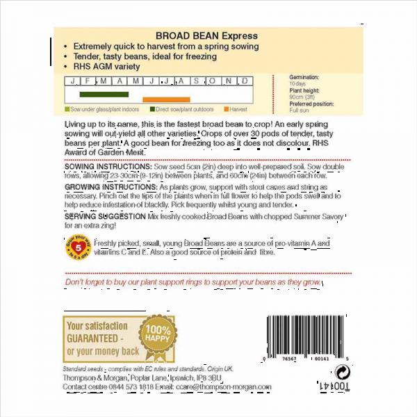Broad Bean Express