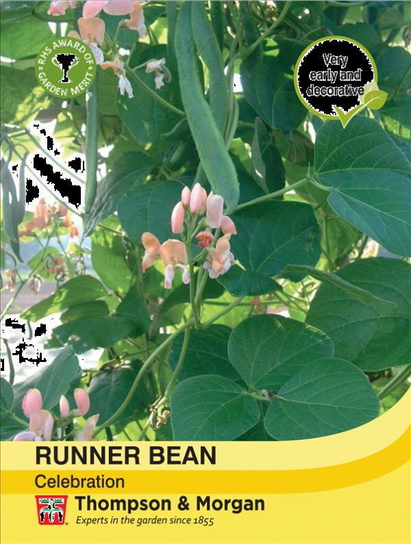 Runner Bean Celebration