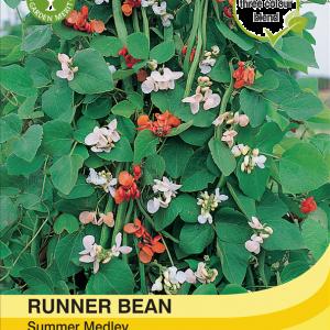 Runner Bean Summer Medley