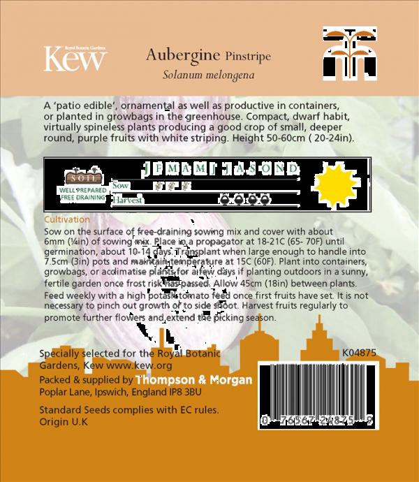 Aubergine Pinstripe