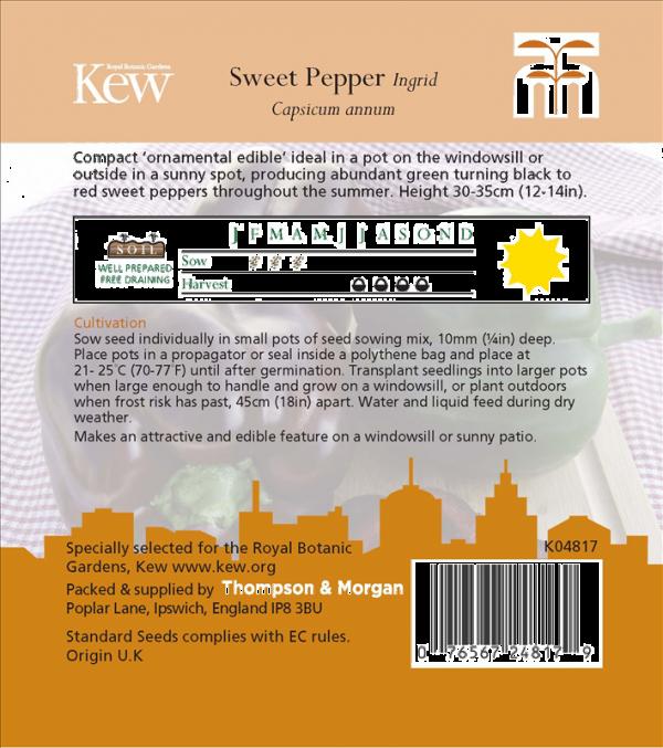 Pepper Sweet Ingrid