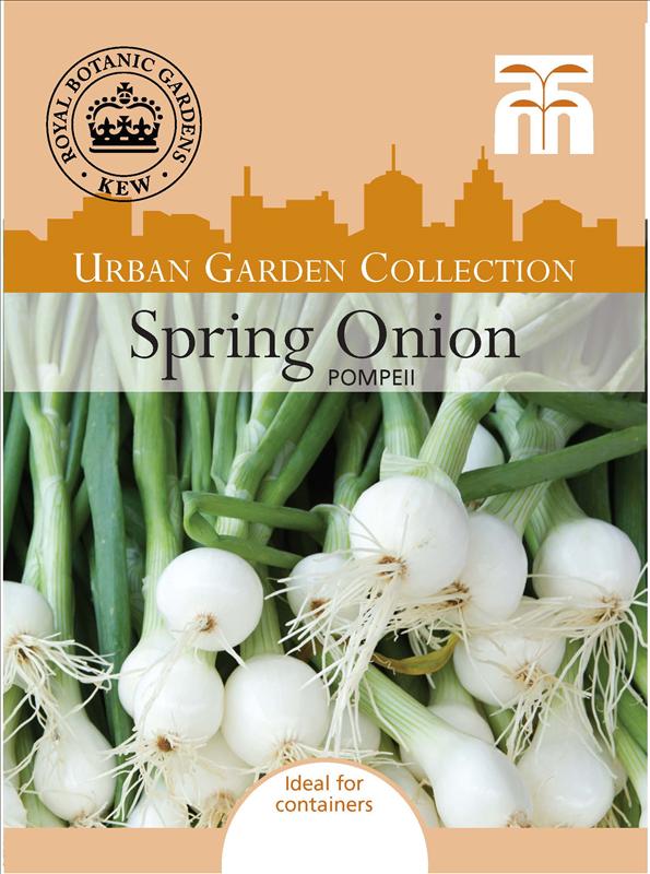 Spring Onion Pompeii