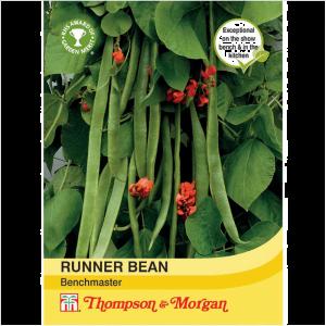 Runner Bean Benchmaster