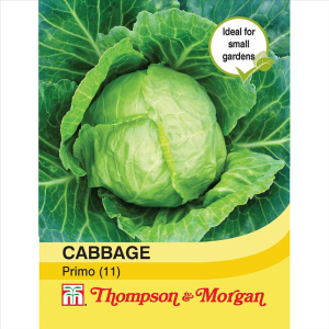 Cabbage Primo (11)