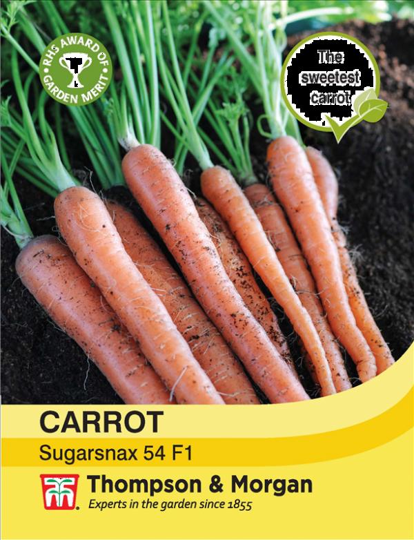 Carrot Sugarsnax 54 F1