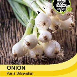 Onion Paris Silverskin
