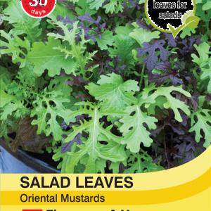 Salad Leaves - Oriental