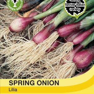 Spring Onion Lilia