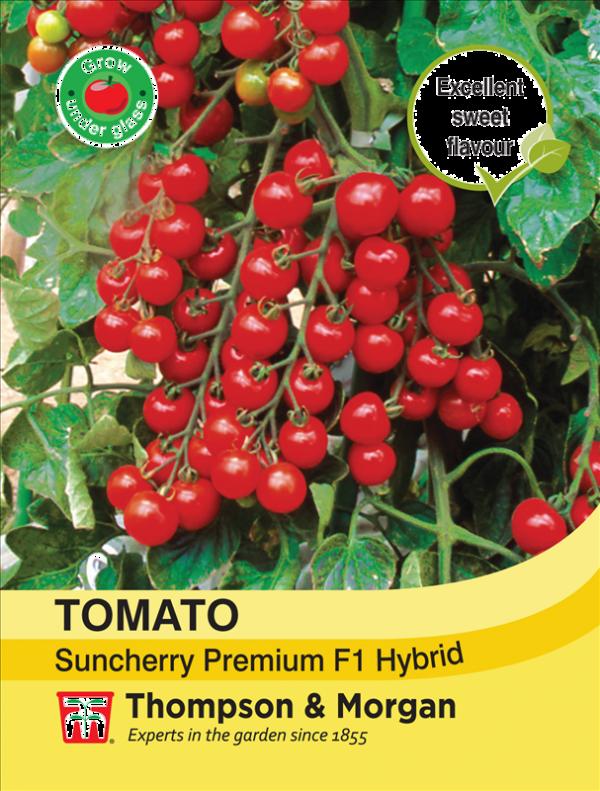 Tomato Suncherry Premium F1