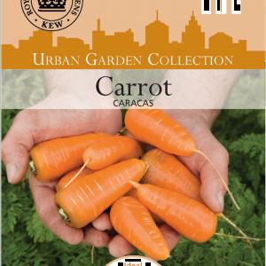 Carrot Caracas