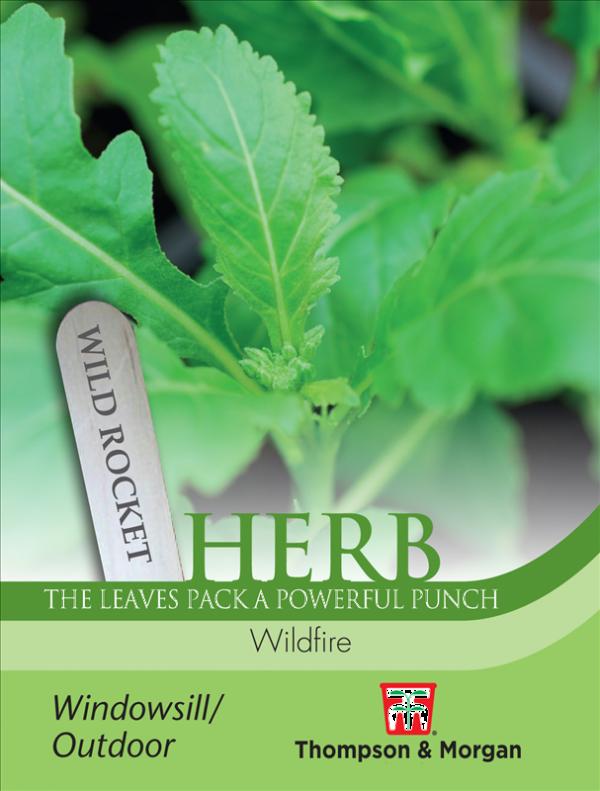 Herb Wild Rocket Wildfire