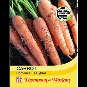 Carrot Romance