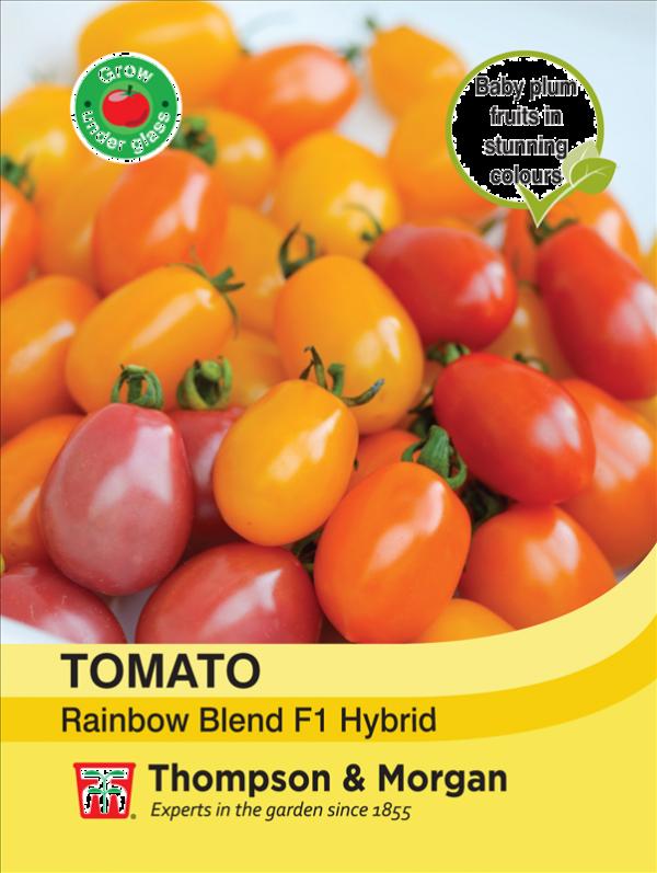 Tomato Rainbow Blend F1