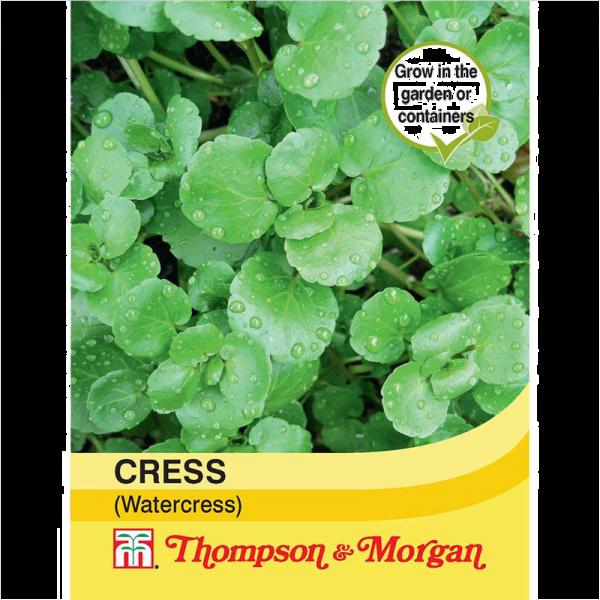 Cress (Watercress)