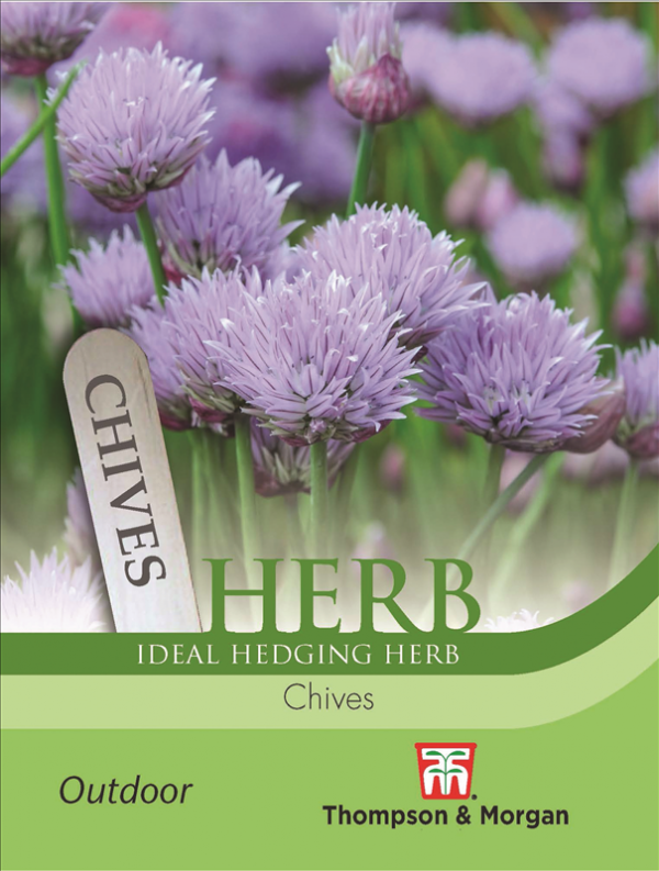 Herb Chives
