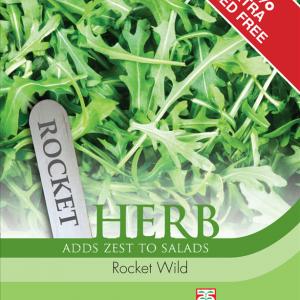 Herb Rocket Wild