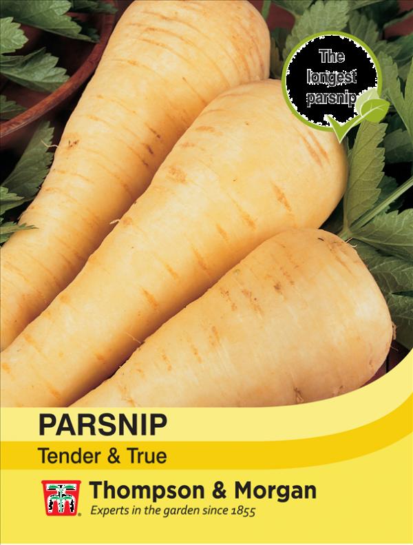 Parsnip Tender & True