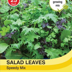 Salad Leaves - Speedy Mix