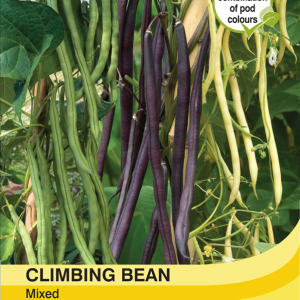 Climbing Bean Mixed