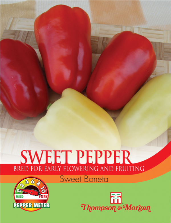 Pepper Sweet Boneta
