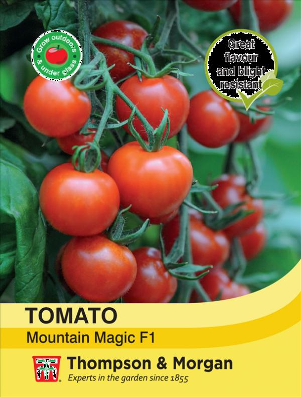 Tomato Mountain Magic F1