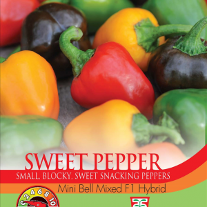 Pepper Sweet Mini Bell F1