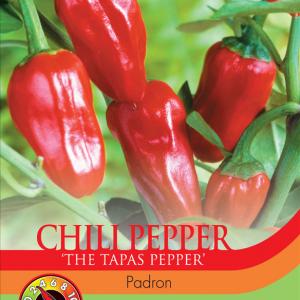 Pepper Chilli Padron