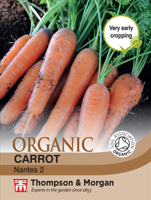 Carrot Nantes 2 (Organic)