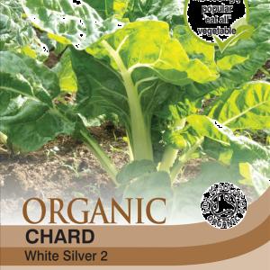 Chard White Silver 2 (Organic)