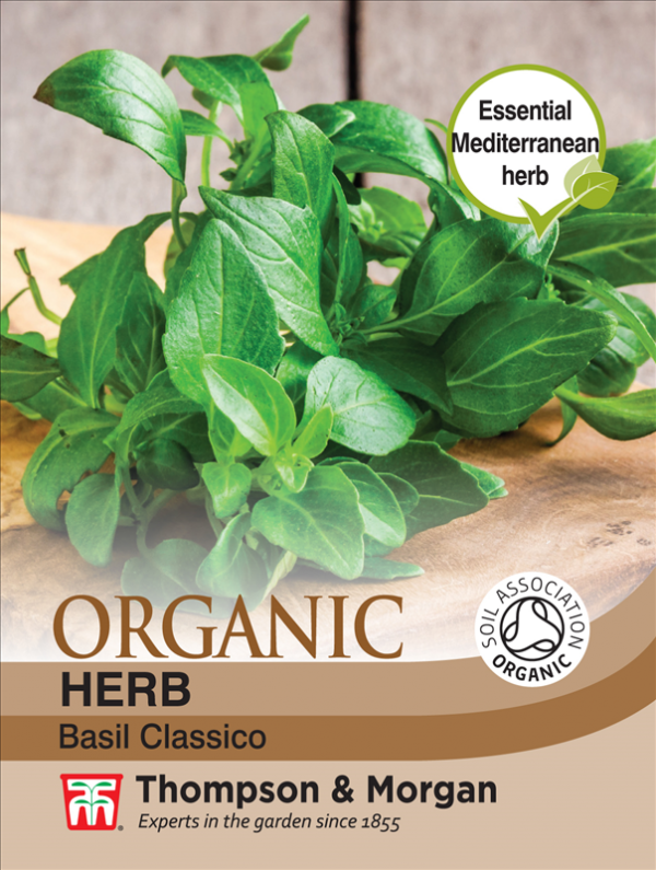 Herb Basil Classico (Organic)