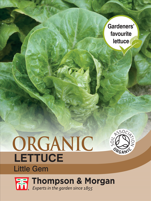 Lettuce Little Gem (Organic)