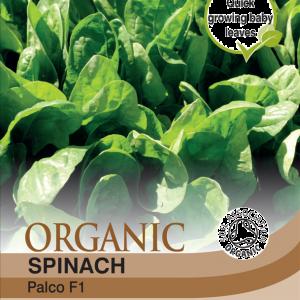Spinach Palco F1  (Organic)