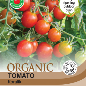 Tomato Koralik (Organic)